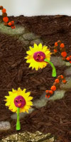 GAME Go Go Garden Defense TAGS tower, strategy, defense, tower defense, vegetables, plants, garden, ninja, ninjamerica, puzzle, creeps